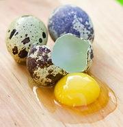 свежие перепелиные яйца по 50 копеек