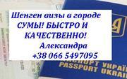 Помощь в оформлении шенген виз в Сумах