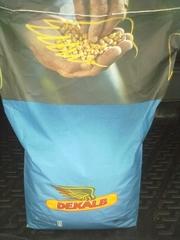 Семена кукурузы Monsanto Dekalb (Монсанто). Оригинал