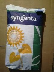 Семена подсолнечника Syngenta (Сингента) Брио,  Роки,  Неома,  Конди