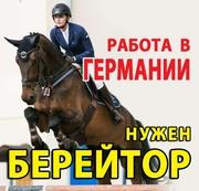 ТРЕБУЕТСЯ БЕРЕЙТОР,  КОНОВОД. Работа в ГЕРМАНИИ. конюх